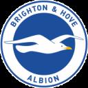 Brighton and Hove Albion Badge