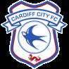 Cardiff Badge